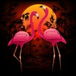 Pink Flamingos on Tropical Sunset-Fenicotteri Rosa nel Tramonto