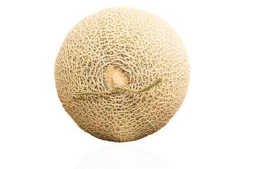 Isolated  Cantaloupe Melon