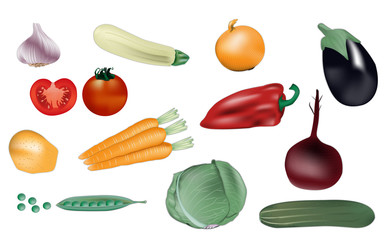 Vegetables vector illustration