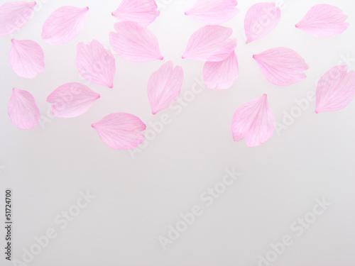 Deurstickers Kersen 桜の花びら