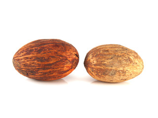 Isolated nutmeg on a white background. Two nuts.
