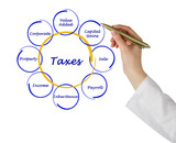 Diagram of taxes