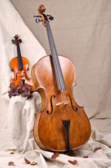 violin and cello on the beige background