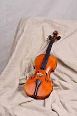 Violin on beige background