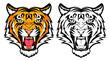 Tiger anger - 51745567