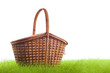Picnic basket on the grass - 51750567