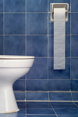 White Sanitary Ware And Long Tissues