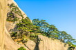 Huangshan Mountains And Trees