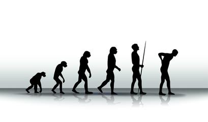 evolution2504a