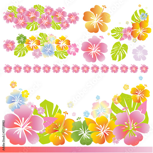 Hibiscus Material Illustration