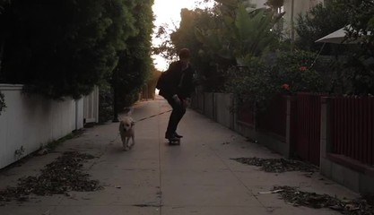 Caucasian skateboarder skating down residential walkway with dog