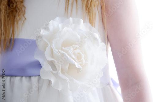 Bridesmaids dress closeup
