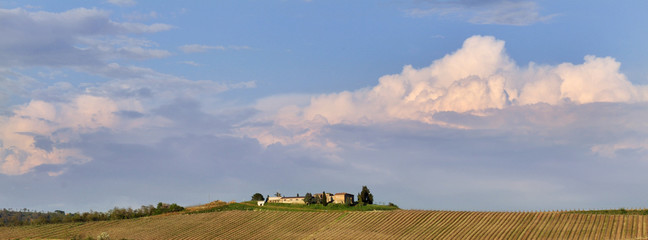 Vista panoramica di casale in campagna circondato da vigneti