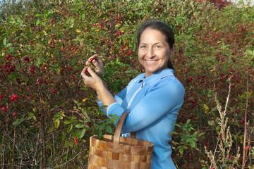 woman aged near rose bush