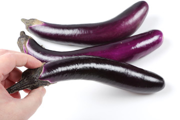 Man picking a eggplant on white background