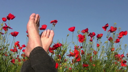 Rest on the poppy field
