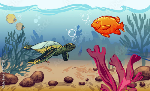 underwater world with marine animals. fish, shell, jellyfish