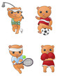 Sport mascot bear collection set 1