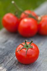 Fresh sweet tomato