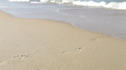 Close Up Of Man Walking Along Beach And Into Sea