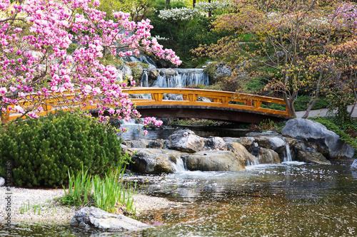 Japanischer Garten im Frühling - 51785785