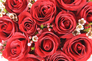 Natural red roses background