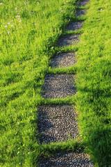 Plattenweg im Gras