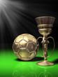 Fussball Pokal Gr