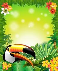 Toucan on Green Jungle Background-Tucano in Sfondo Giungla
