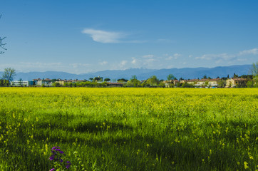 Paesaggio di campagna in periferia