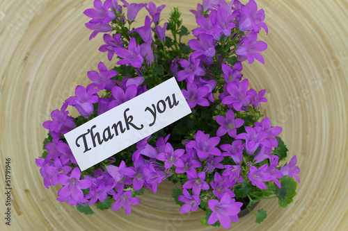 Thank you note with Campanula bell flowers