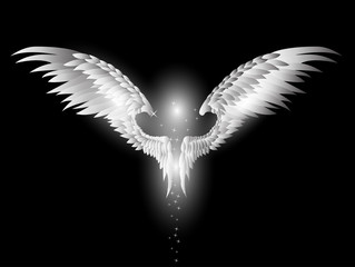 angel wings on dark background
