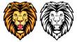 Lion anger