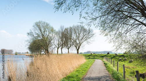 Dutch rural landscape in springtime
