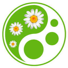 Eco labels. Green symbol concept using Yin Yang in a leaf design