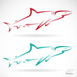 Vector illustration of shark banner on white background