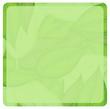 A green paper