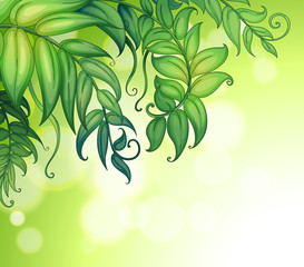 A special paper with green leaves