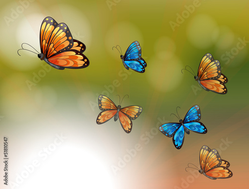 Foto op Aluminium Vlinders A special paper with orange and blue butterflies