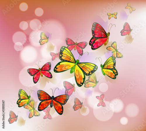 Foto op Aluminium Vlinders A stationery with a group of butterflies