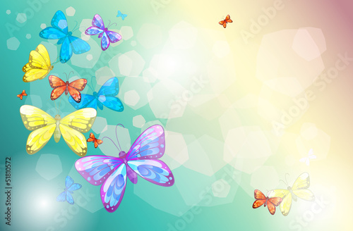 Poster Vlinders Colorful butterflies in a special paper