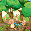 Four rabbits playing at the forest