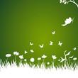 blumenwiese, dunkelgrün, gras, frühling, floral, taube, vektor