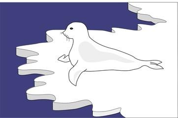 foca en el ártico