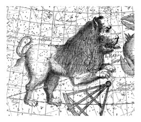 Astrology/Astronomy - Sky Map : Leo - Lion - Löwe