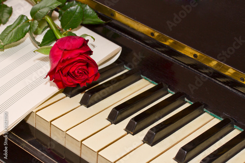 rose with notes paper on piano