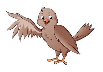 Vogel Sperling Spatz