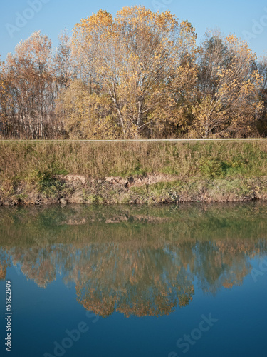 Part of a riverbank with reflection on water surface