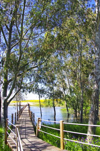 Wooden bridge into the lake of Alqueva in Alentejo, Portugal