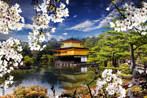 Beautiful sakura with gold color